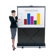 Freestanding Portable Projector Screen (60