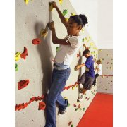 Everlast Standard Climbing-Wall Package (20x10')