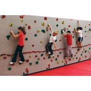 Climbing Wall Extension (4'Lx10'H)
