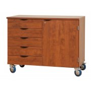 Mobile Storage Cabinet with Door 5-Drawers, 1 Adj. Shelf