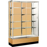 Panel-Back Trophy and Display Case (48