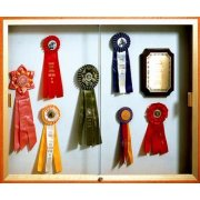 Wall Mounted Display Case w/ Plaque Fabric (72