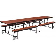 Fixed-Bench Cafeteria Table Plywood Core Protect Edge (12')