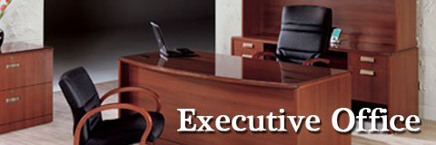The right executive office furniture can give your company a successful professional appearance.
